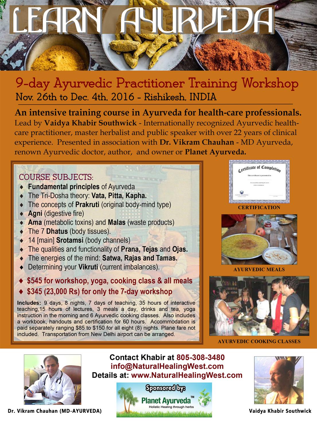 9-Day Ayurvedic Practitioner Workshop - Rishikesh, India