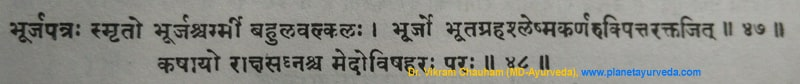 Ancient Verse about Bhoj Patra