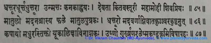 Ancient Verse about Datura metel