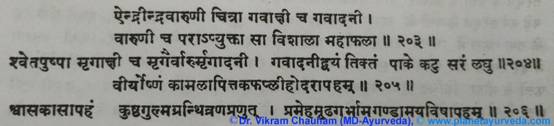 Ancient Verse about Indravaruni