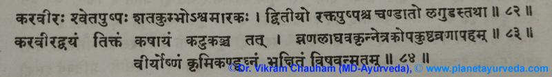 Ancient Verse about Nerium indicum