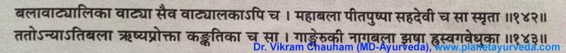 Ancient Verse about Bala Sida cordifolia