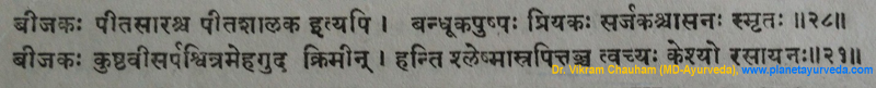 Ancient Verse about Vijaysar