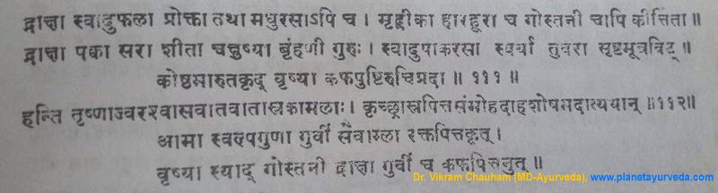 Ancient verse about Vitis vinifera