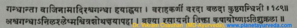 Ancient Verse Ashwagandha