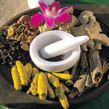 Ayurveda, natural supplements, Ayurvedic, Herbs, herbal supplements