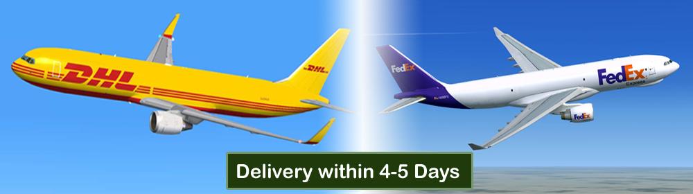 Shipping Via DHL or FedEx