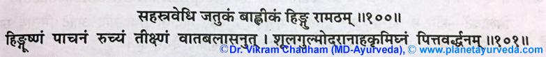 Ancient Verse Hing (Ferula narthex)