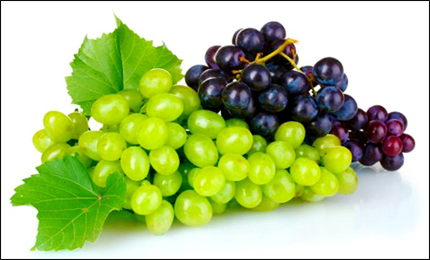 Angoor, Grapes, Vitis Vinifera