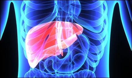 Diet Plan for Liver Disease Patients