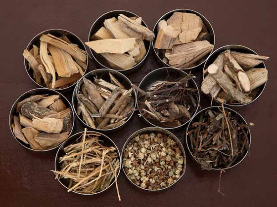 Pancha kashaya, Ayurveda, Herbs