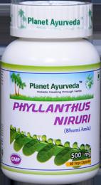 Phyllanthus niruri Capsules Price