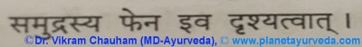 Ancient verse about Samudra Fen (Sepia officinalis)