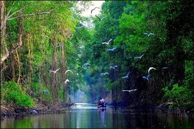 Planet Ayurveda in Trinidad and Tobago