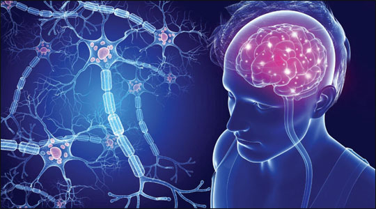 Effect of Multiple Sclerosis on Brain