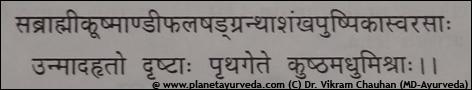 Shloka of Kushmanda Swarasa
