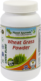 Wheat grass powder, Wheatgrass powder